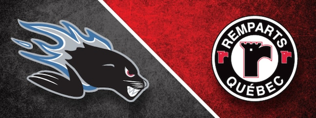 Saint John Sea Dogs - Quebec Remparts