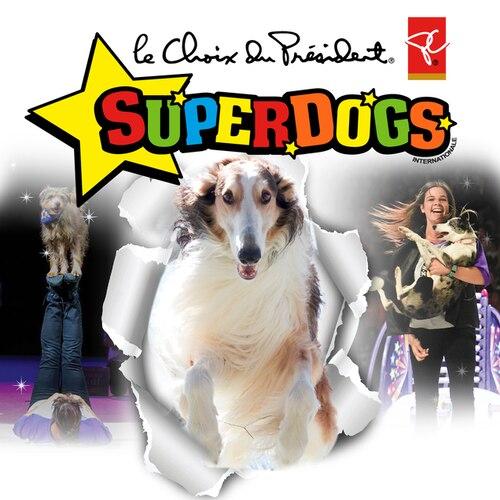 SuperDogs