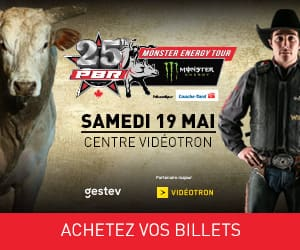 link to https://www1.ticketmaster.ca/event/3100538BAC372E0A?brand=videotron&lang=fr-ca