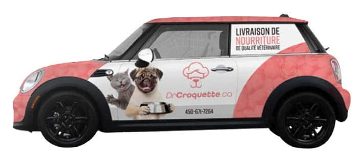 Dr Croquette