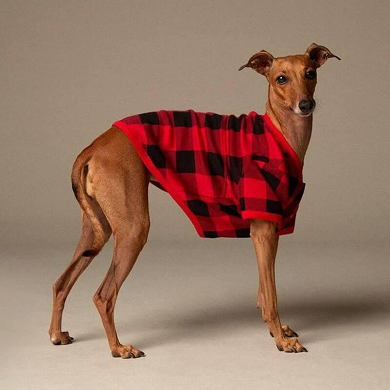 Pyjama pour chien Indigo – carreaux rouges et noirs chez Indigo