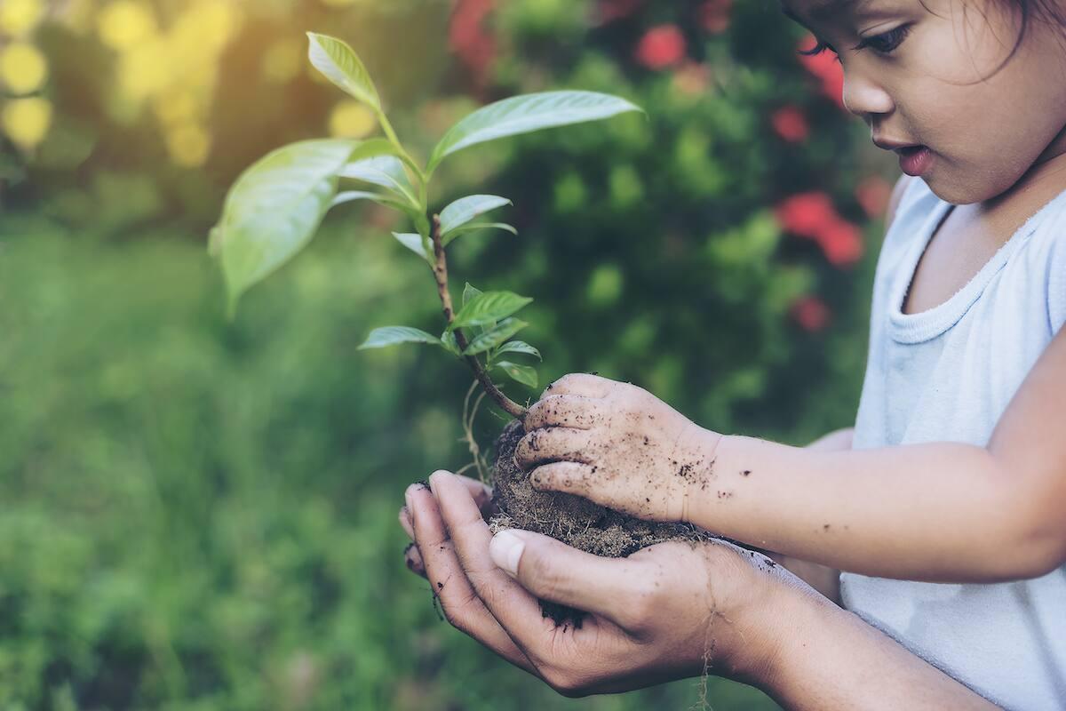 Véganisme - réduire notre empreinte environnementale