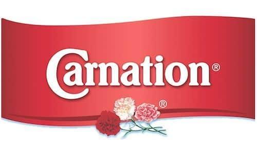 Robin hood - Carnation