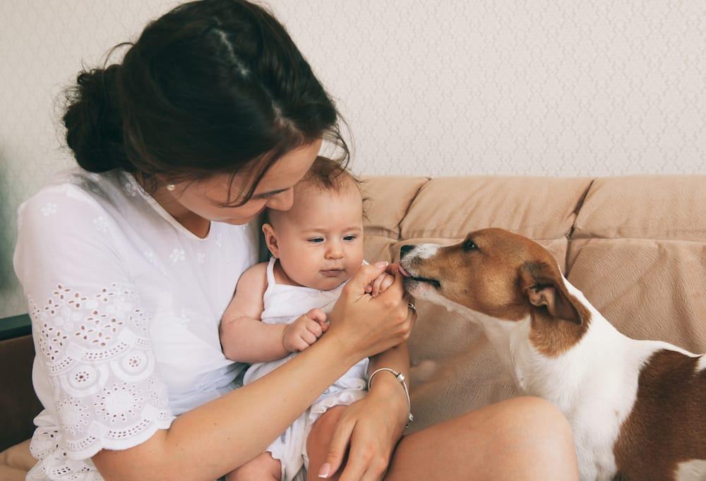 Enfants chien famille