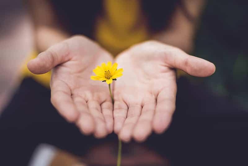 fleur main