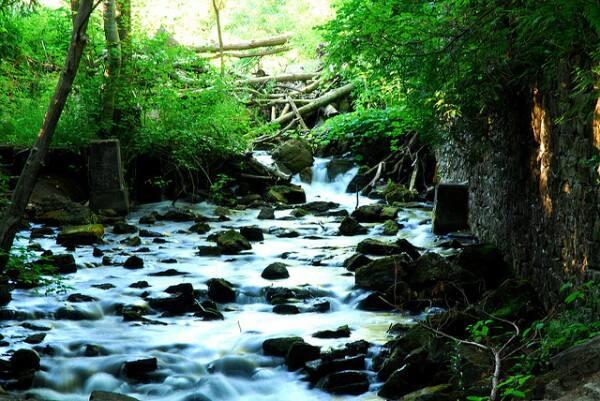 Ken-Mist-Black-Creek-BT-nr-Limehouse