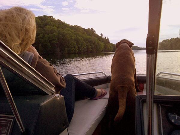 Cruising the waters