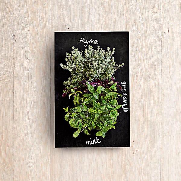 williams-sonoma wall planter