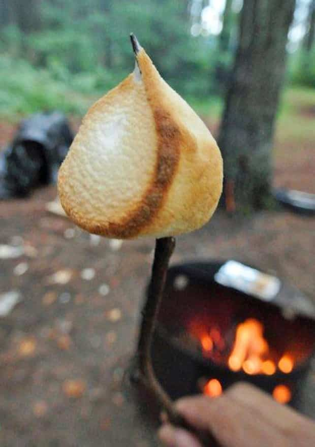 a perfectly roasted marshmallow