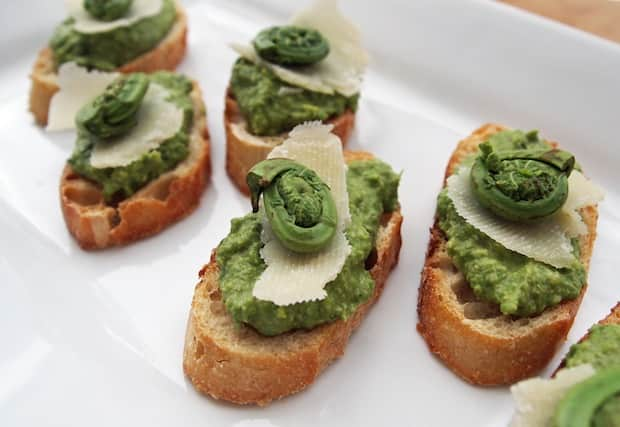fiddlehead crostini