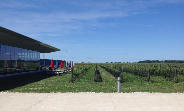 Southbrook Vineyards