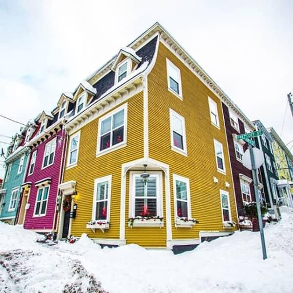 Colourful Newfoundland houses