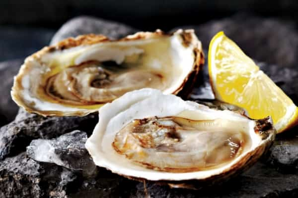Romantic dinner idea -- Oysters on the half shelf