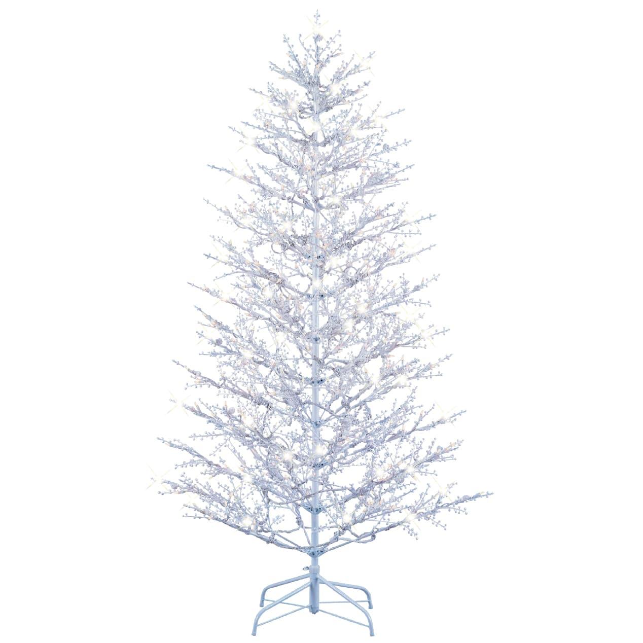 winter berry branch tree