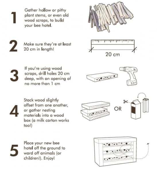 DIY bee hotel instructions