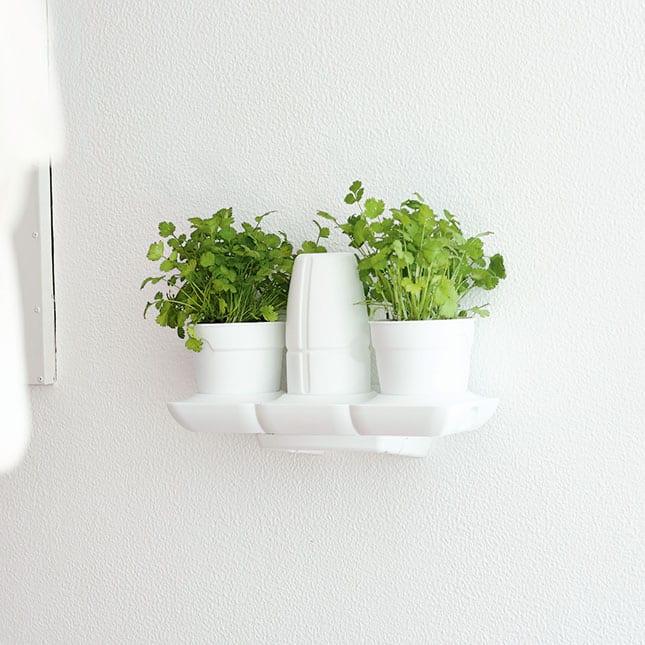 minigarden basic pots