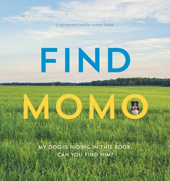 FindMomo_BookCover