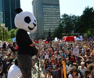 Anarchopanda lors d'une manifestation contre la hausse des droits de scolarité en août 2012.