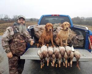 De nombreux coups de feu se feront entendre dès ce matin à proximité des différents plans d'eau où cohabitent les diverses espèces de canard.