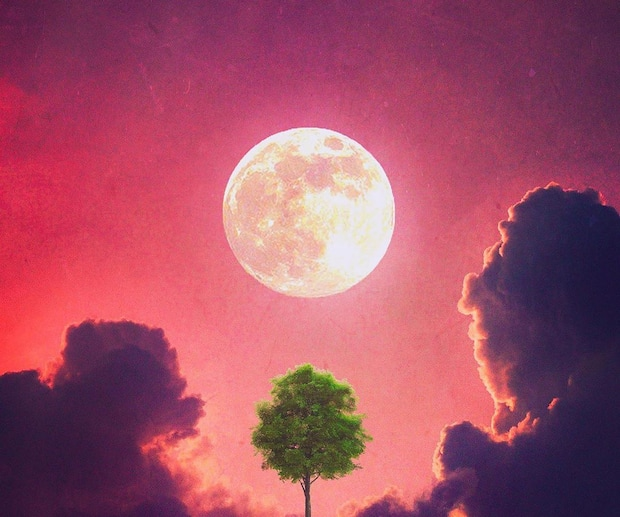 Image principale de l'article La pleine lune rouge du 3 août sera inspirante