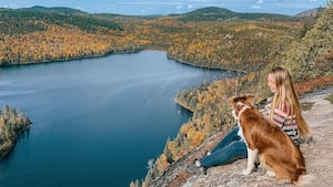 Image principale de l'article 5 randonnées d'automne à mettre à votre calendrier