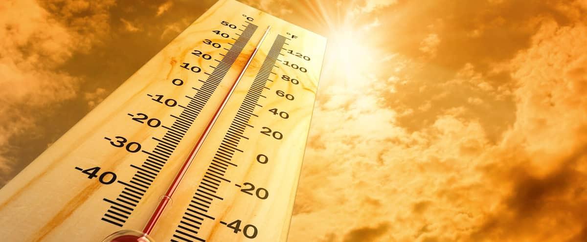 La chaleur fera de plus en plus de victimes dans les prochaines décennies