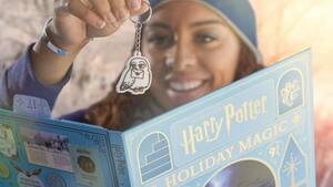 Image principale de l'article Un calendrier de l'avent Harry Potter