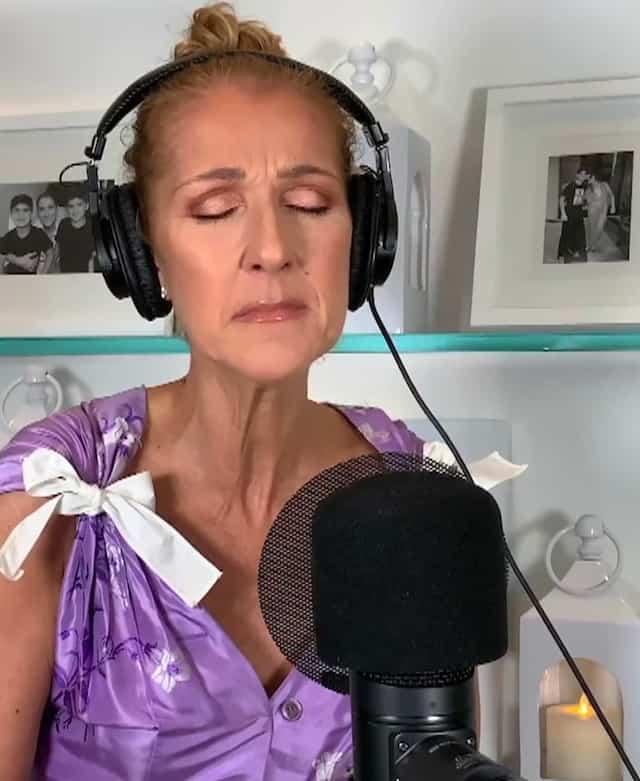 Accompagné de plusieurs autres artistes, Céline Dion et Jean-Pierre Ferland ont offert un moment émouvant