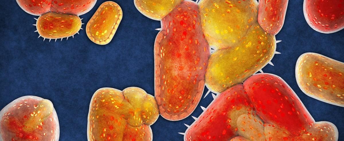 VIH : nouvelle avancée par des chercheurs de l'INRS - Le Journal de Montréal
