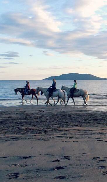 Image principale de l'article Où faire une balade à cheval sur la plage