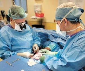 Des chirurgiens plasticiens dénoncent que le forfait de garde de près de 4000$ par jour est trop élevé dans le programme CEVARMU du CHUM, et demandent qu'il soit revu à la baisse.
