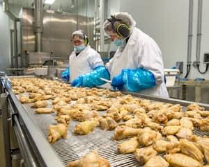 Des travailleurs préparaient des ailes de poulet à l'usine d'Exceldor de Saint-Bruno-de-Montarville, il y a un an.