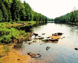 Dans Lanaudière, seulement 54km2 du parc régional de la forêt Ouareau sont protégés, alors que les citoyens demandaient que 700km2 soient sauvegardés.