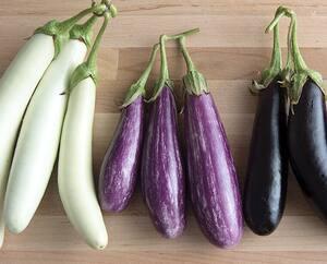 Il existe plusieurs cultivars de mini aubergines qui poussent très bien en pots et sont idéals pour les espaces restreints.