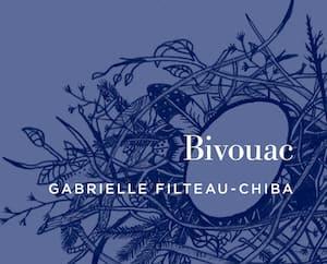 <b><i>Bivouac</i></b><br> Gabrielle Filteau-Chiba<br> Éditions XYZ<br> 384 pages