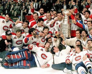 Coupe Stanley 1993