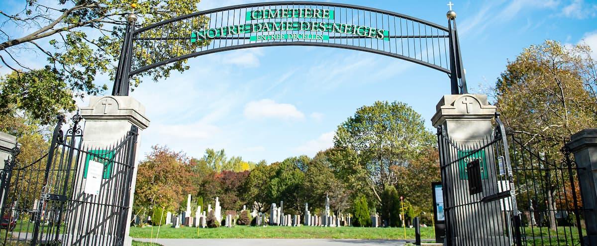 Le cimetière Notre-Dame-des-Neiges enfin ouvert le dimanche