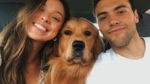 Image principale de l'article 10 signes que vous êtes prêts à adopter un chien