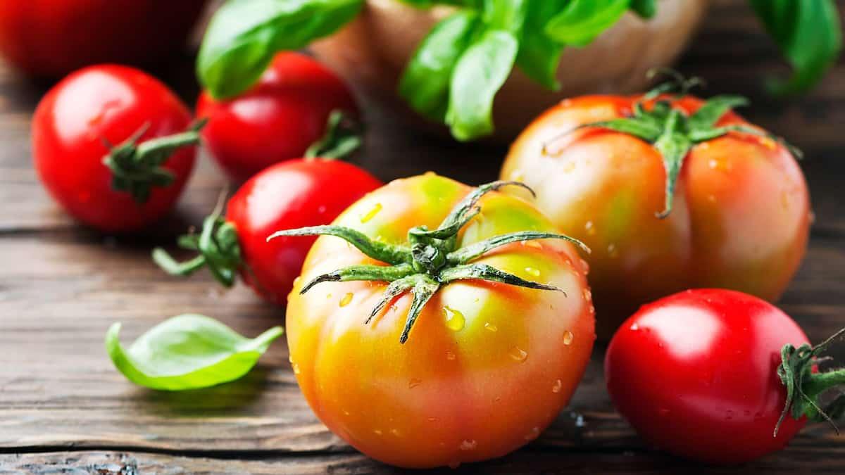 Pas de tomates québécoises dans le ketchup