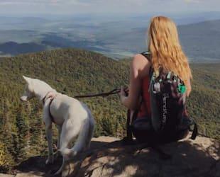 Image principale de l'article 5 randos à faire avec votre chien