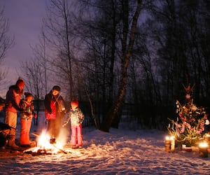 Family Christmas in the forest
