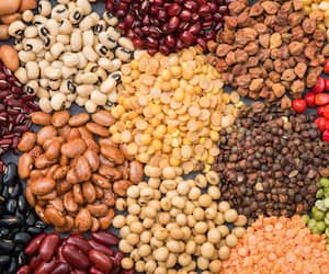 Multicolor dried legumes for background, Different dry bean for eating healthy