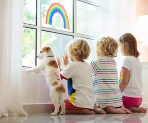 Coronavirus quarantine. Kids at window. Stay home.