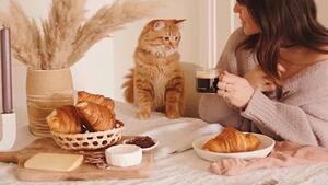 Image principale de l'article Cette boulangerie offre des croissants gratuits