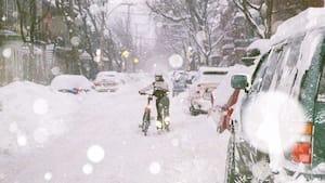 Image principale de l'article 19 belles photos de Montréal sous la neige