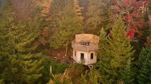 Image principale de l'article 10 nouvelles cabanes dans les arbres à essayer