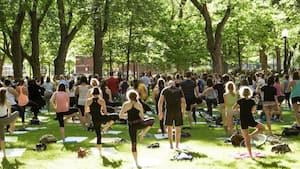 Image principale de l'article Des cours de yoga «distancés» dans le parc