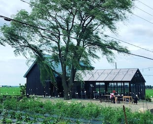 Image principale de l'article Mangez à la ferme de la chef Fisun Ercan