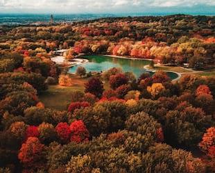 Image principale de l'article 30 photos WOW de Montréal l'automne