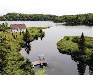 Les concentrations d'algues bleu-vert dans le lac Millette à Sainte-Adèle sont telles que la baignade devrait y être interdite.